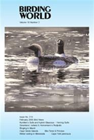 Tidningen Birding World 12 nummer