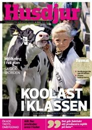 Tidningen Husdjur 11 nummer