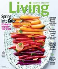 Tidningen Martha Stewart Living 10 nummer