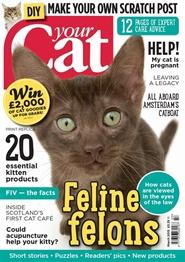 Tidningen Your Cat 12 nummer