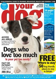 Tidningen Your Dog 12 nummer