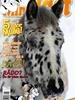 Tidningen Min Häst 24 nummer