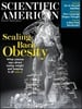 Bilde av Tidningen Scientific American 12 nummer