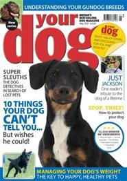 Tidningen Your Dog 12 nummer