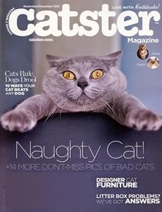 Prenumeration Catster